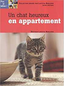 Chat heureux en appartement