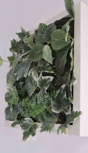 Cadre végétal idée decoration