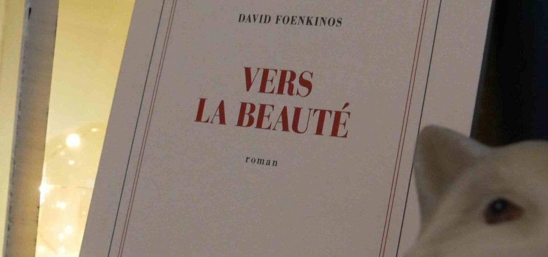 vers la beauté avis litteraire